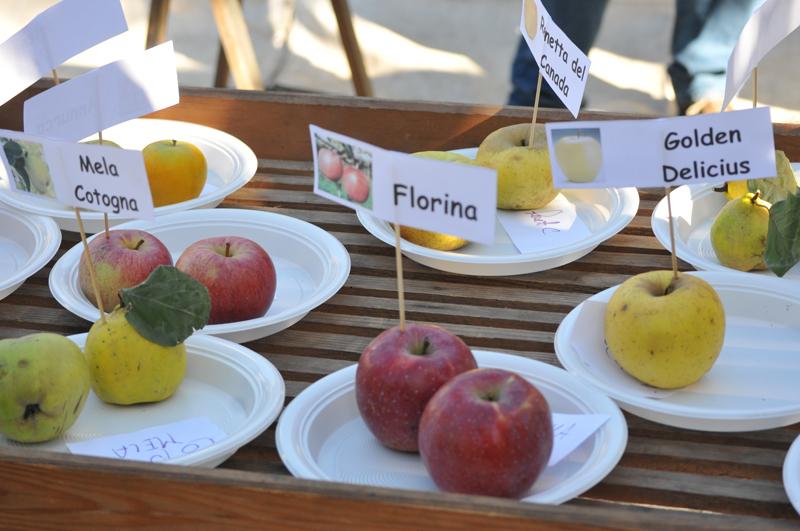 In Crusinallo von Omegna ist die Zeit der…Äpfel am 16./17. Oktober!