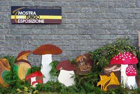 In Trarego Viggiona die Pilzausstellung am 10. Oktober
