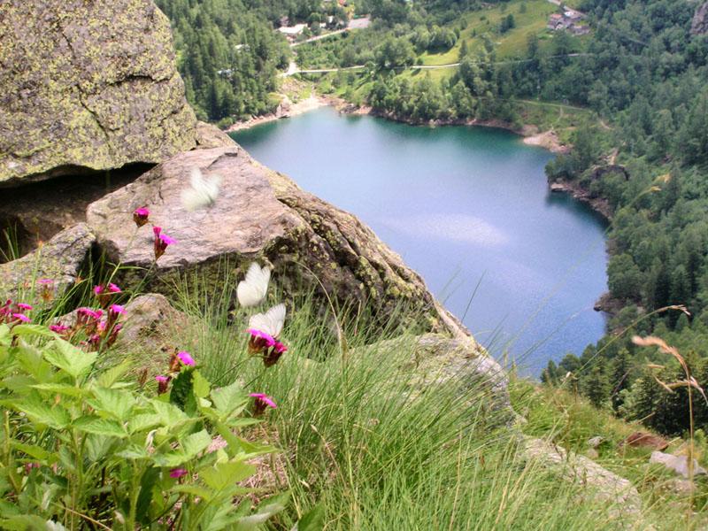 Antrona Lake