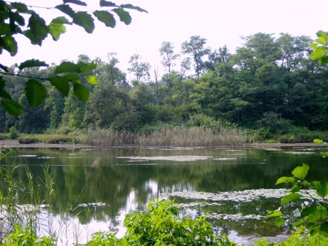 Parco dei Lagoni di Mercurago