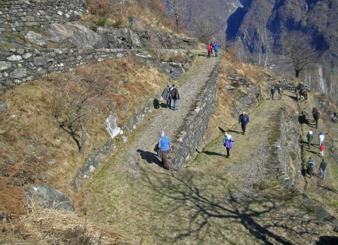 Mulattiera militare per il Forte di Bara_A.Pirocchi